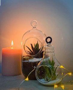 Borosilicate Glass Antique Hanging Flower Planter
