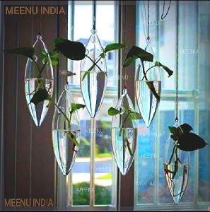 Borosilicate Glass Hanging Money Plant Planter
