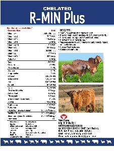 R-MIN Plus
