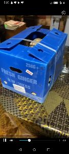 Ginger Packaging Box