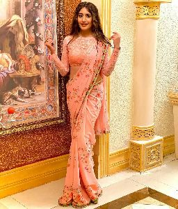 Designer Gorgeous Saree