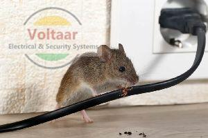 Rodent Repellent System Installation Services