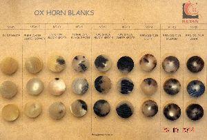 Horn Button Blank