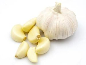 Certified Garlic Seeds
