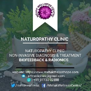 Alternative Medical Therapies Non-Invasive Diagnosis and Therapy