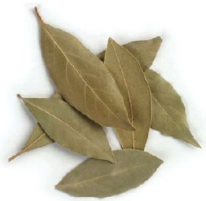 Organic Dried Bay Leaves