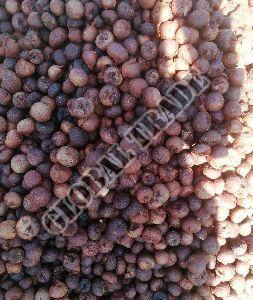 Boiled Betel Nut