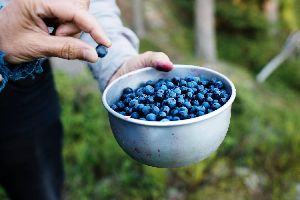 DRIED BLUEBERRIES(NATURAL NUTS)HAPPY FOODS