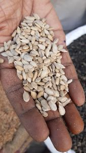 SUNFLOWER OIL SEEDS(NATURAL NUTS)HAPPY FOODS