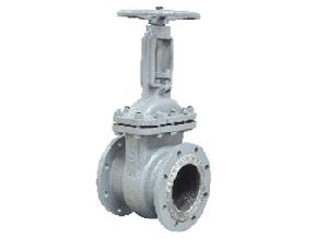 A351 CF3M Cast Stainless Steel Gate Valve