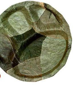 Sal Leaf Partition Plates