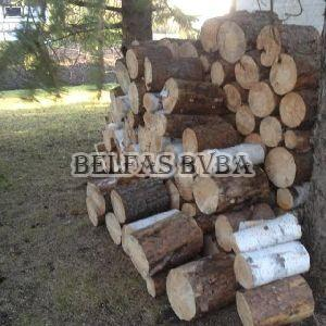 Birch Firewood Logs