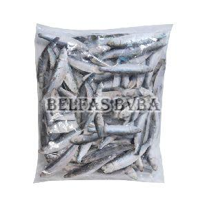 Frozen Sprats