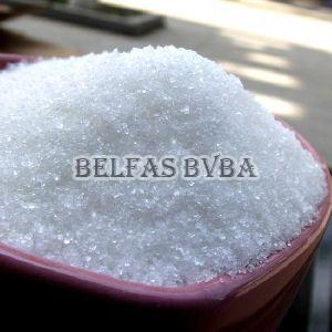 Raw White Sugar