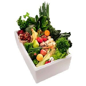 Thermocol Vegetable Box