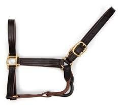 Leather Horse Belts