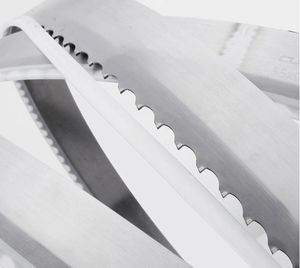 Frozen Fish Cutting Bandsaw Blades