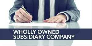 Formation Wholly Owned Subsidiary
