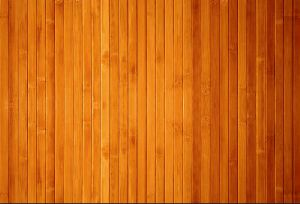 Bison Plain Board