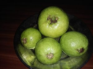 Fresh Baruipur Guava