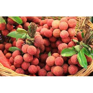 Fresh Baruipur Litchi