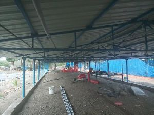Poultry Shed Construction Service
