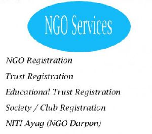 NGO Registration Services in India