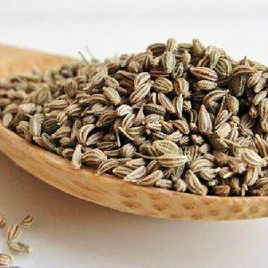 Thymol seed