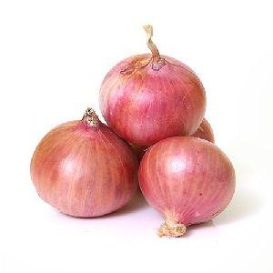 Pink Onion
