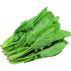 Fresh Natural Spinach Leaves