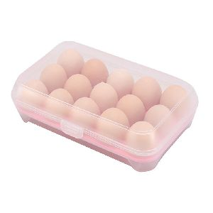Plastic Egg Tray with Lid