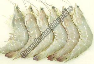 Fresh White Prawns