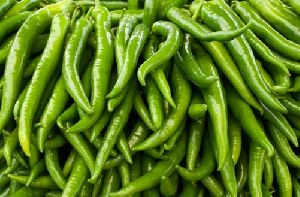 Fresh Green Chilli
