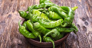 Fresh Indian Green Chilli