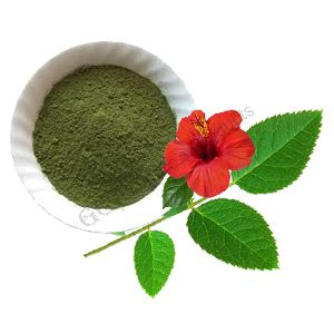 Hibiscus Leaf Powder