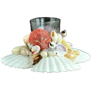 Sea Shell Pen Stand