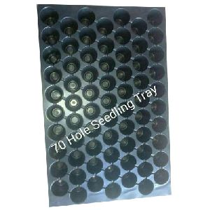 70 Hole Seedling Trays