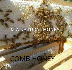 Bee Comb Honey