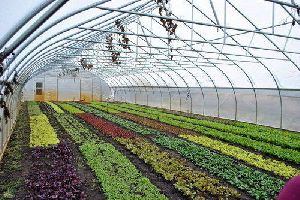 Horticulture Farm Development Services