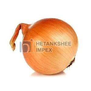 Fresh Yellow Onion