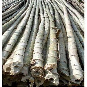 Balkuwa Bamboo