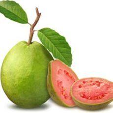 Pink Pulp Guava