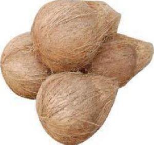 Semi Husked Brown Coconut