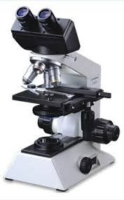 Binocular Microscopes