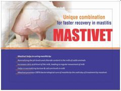Mastivet Anti Mastitis Powder