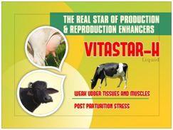 Vitastar-H Liquid