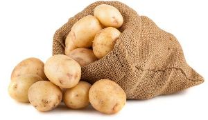 Fresh Gujarat Potato