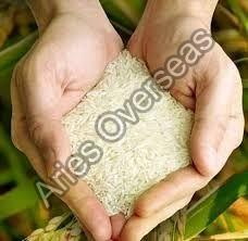 PR14 Sella Non Basmati Rice