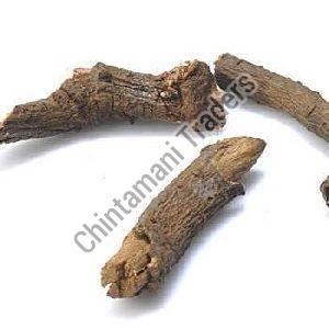 Chitrakmool Herb