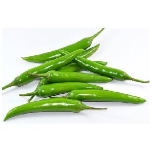 Fresh Hybrid Green Chilli